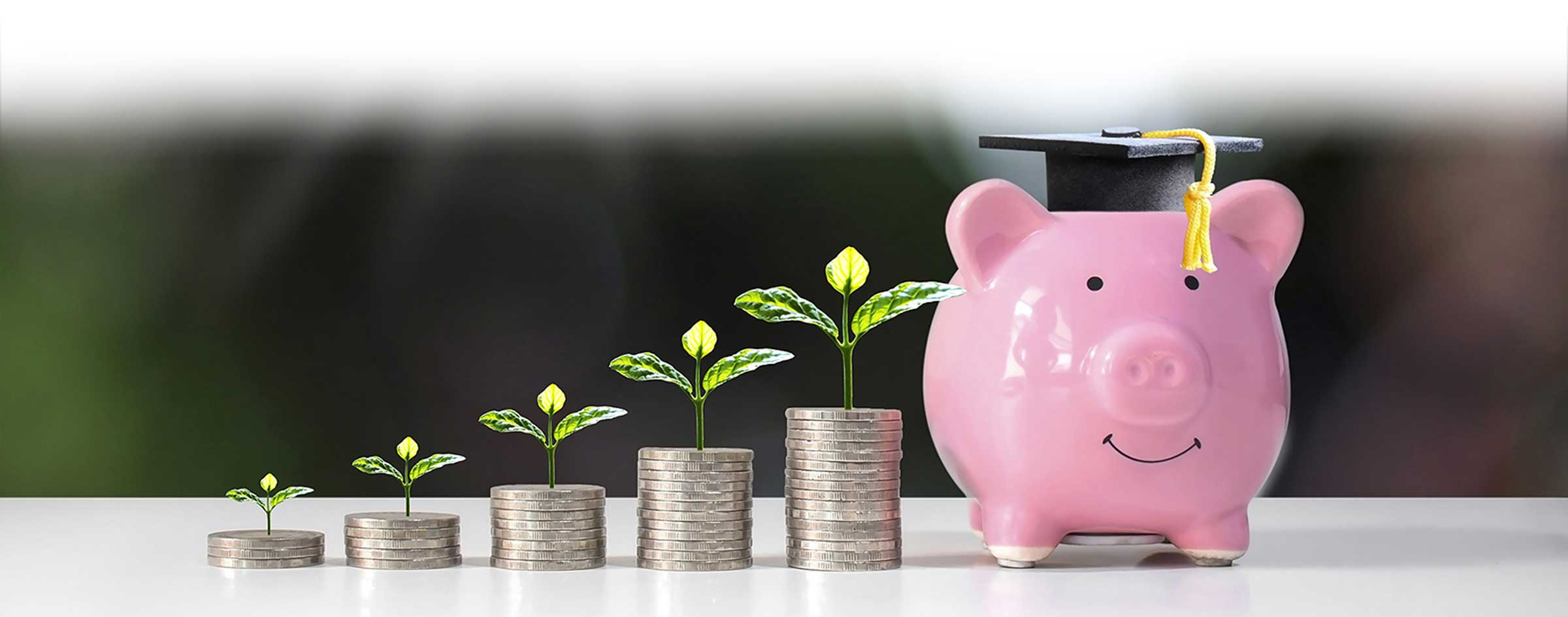 Stacked coins in upward growth trend, plant growth, piggy bank with graduation cap
